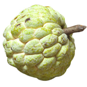 custard apple, ata, sharifa
